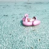Pins4you, Flamingo-go-go