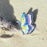Pins4you, Beautiful butterfly