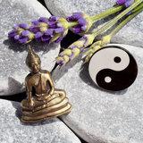 Pins4you, Lucky Buddha & Yin&Yang
