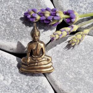 Pins4you, Lucky Buddha